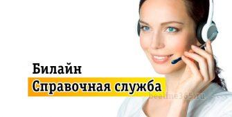 Телефон оператора справочной службы Билайн