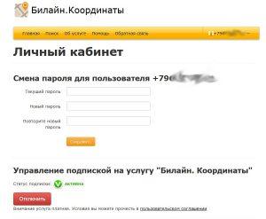 Смена пароля и отключение услуги