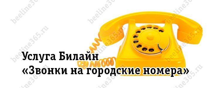 Услуга Билайн «Звонки на городские номера»